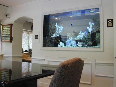 Разновидности аквариумов и их роль в современном интерьере