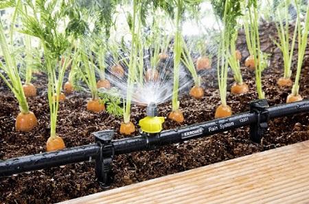 Капельный полив для огорода: принцип работы системы, подключение и монтаж
