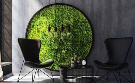 Преимущества мха как декоративного элемента в интерьере