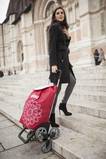 Какими достоинствами обладают сумки-тележки и для чего они нужны